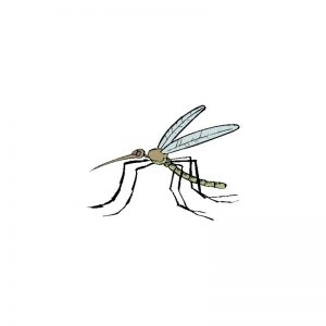 test avis destructeur insecte duramaxx